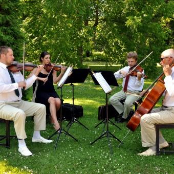 Edelweiss-kvartett